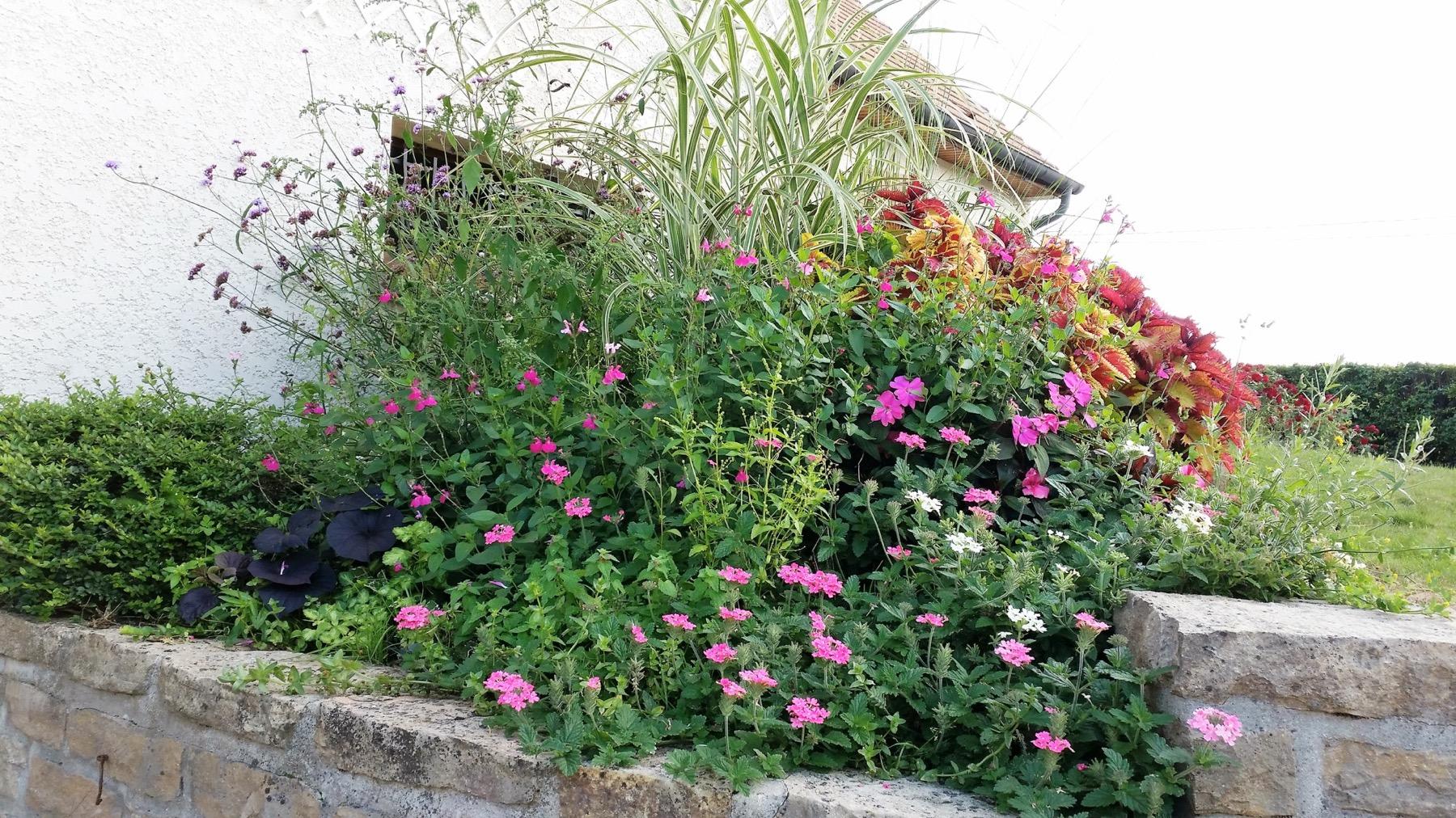 accueil ambiance parcs jardins paysagiste beaune et environs. Black Bedroom Furniture Sets. Home Design Ideas